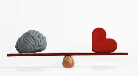 Which has more weight in decisions? Your brain or your heart.s