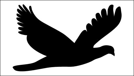 An enlarged bird shape in  balance with surrounding whitespace and activating the space