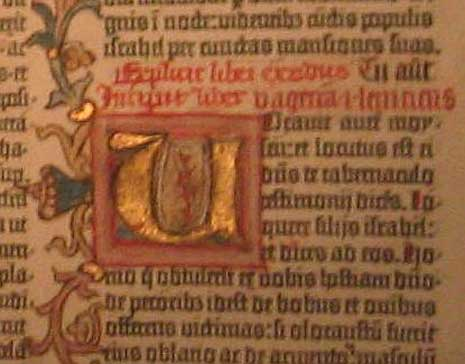 Detail from the Gutenberg bibe showing the illumination added after printing.
