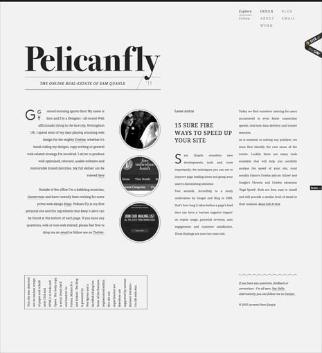 Screenshot of the Pelican Fly home page