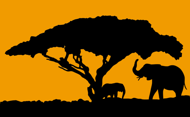 A silhouette  of elephants at a tree