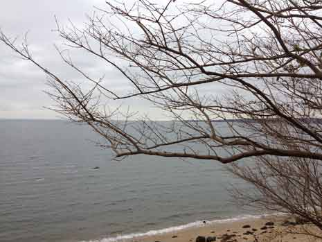 Long Island Sound at Sand's Point