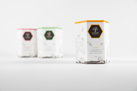 Student design for honey in a hexagonal package