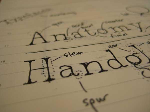 Typeface anatomy sketch