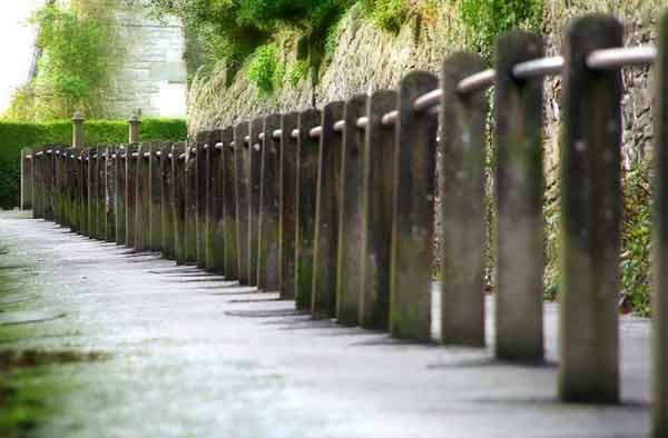 Fence Posts Forming Linear Perspective