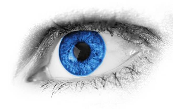 a blue eye on a white background